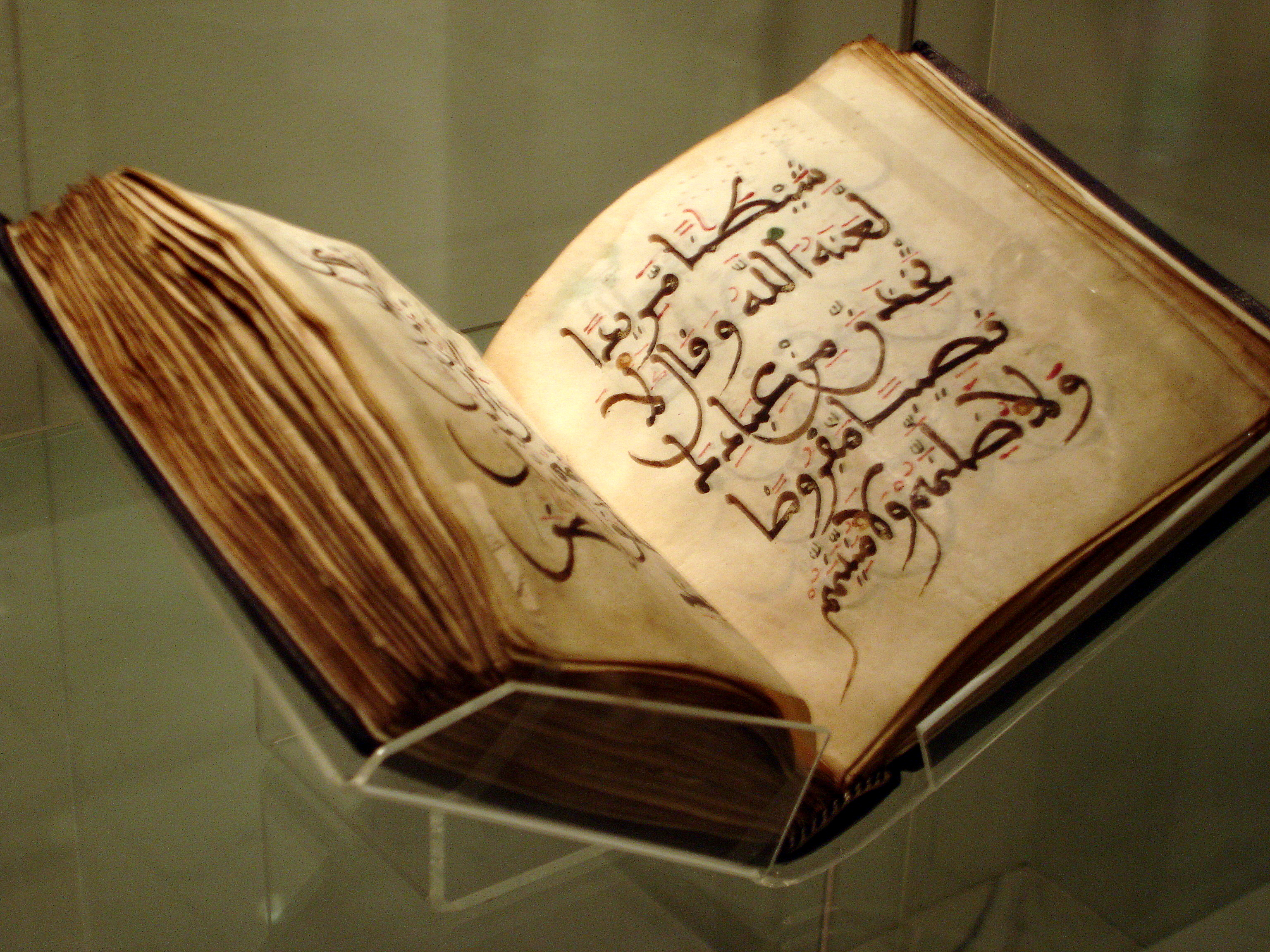 My Experience Reading the Holy Qur'an