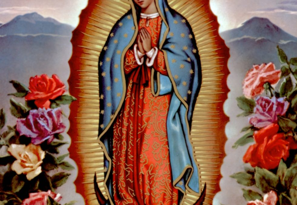The Deficiencies of Brown Bodies?      My Pilgrimage with Guadalupe